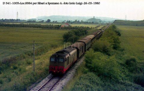 D.341.1005 – Spezzano A. – 26 Maggio 1980